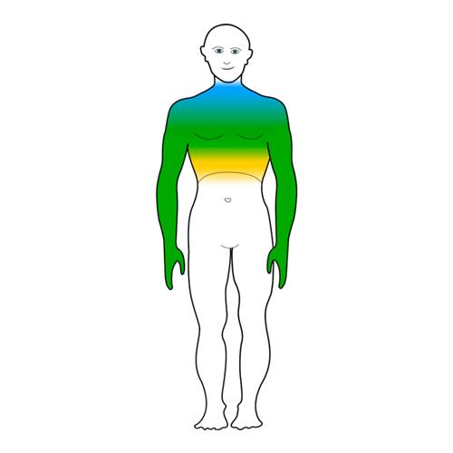 Durch die Maske tönen Emotionalbereich | Zentrum für ganzheitliche Traumatherapie | Thomas Maria Quack