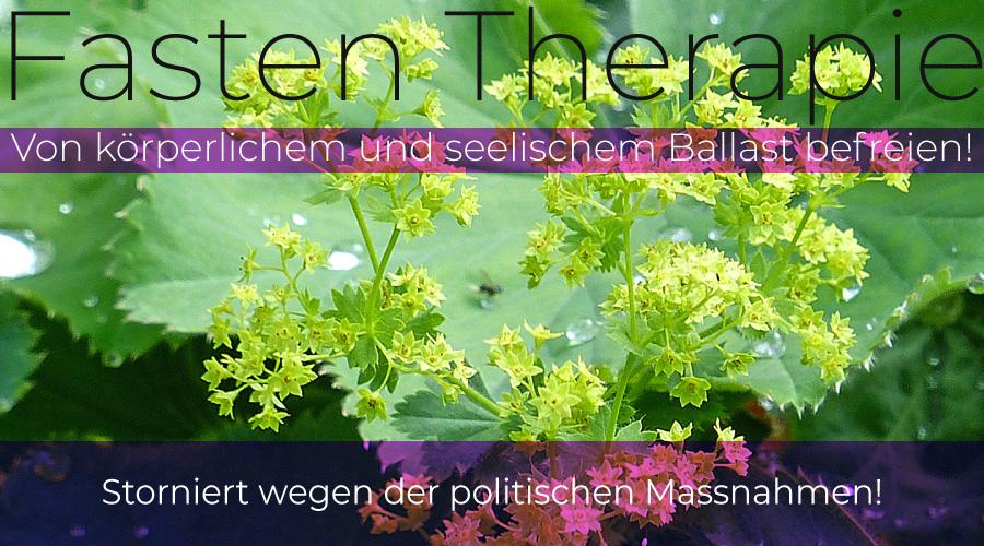 Fasten und Therapie | Storniert | Zentrum für ganzheitliche Traumatherapie | Traumaorientierte Gruppentherapie